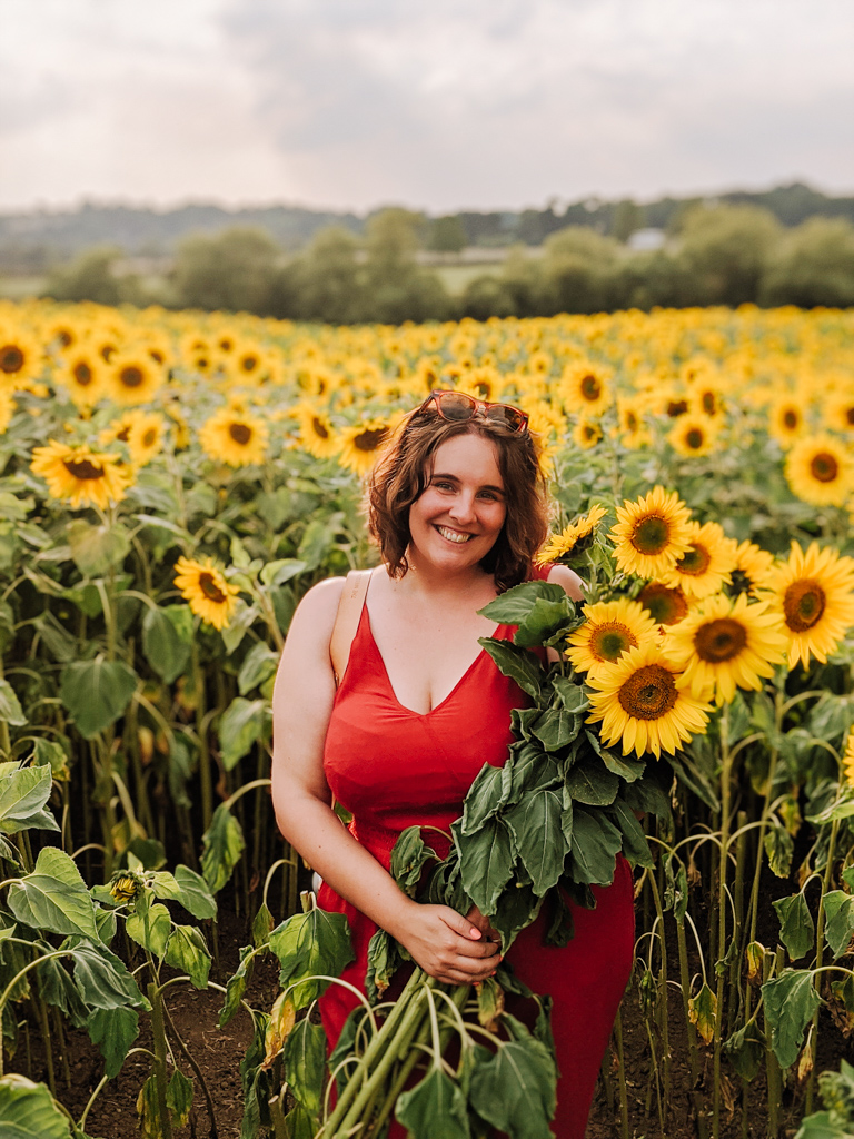 Sunflower Fields in the Cotswolds - The Weekend Tourist